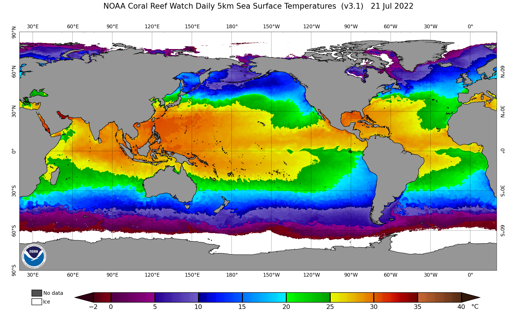 SST daily current